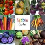 Rainbow Kid Garden