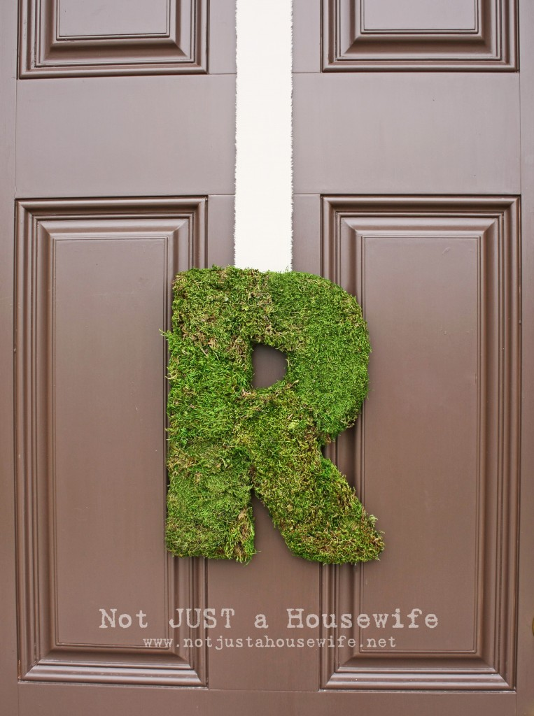 moss letter 1 edited 1 763x1024 Moss Projects