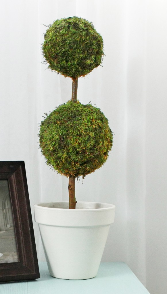 moss topiary 581x1024 Moss Projects