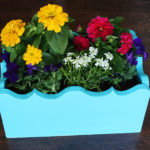 Build Your Own Planter Box!