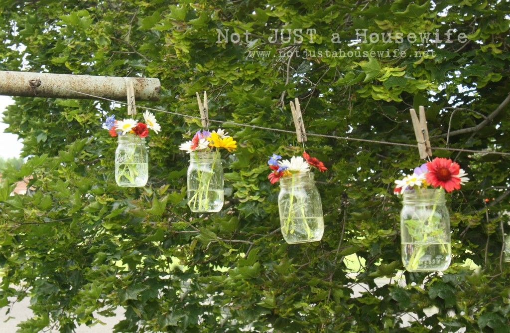 flowers on clothes line 1024x668 Flowers On The Clothes Line