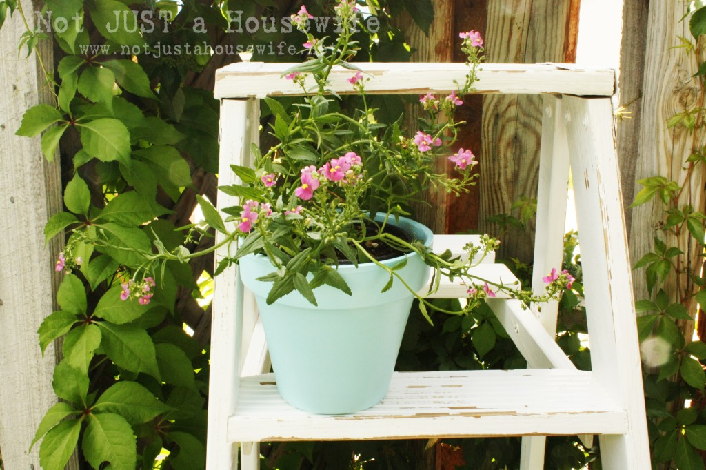 ladder flower pot 1024x682 Ideas for Outdoor Decorating