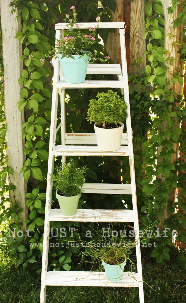 ladder plant stand 628x1024 Ideas for Outdoor Decorating
