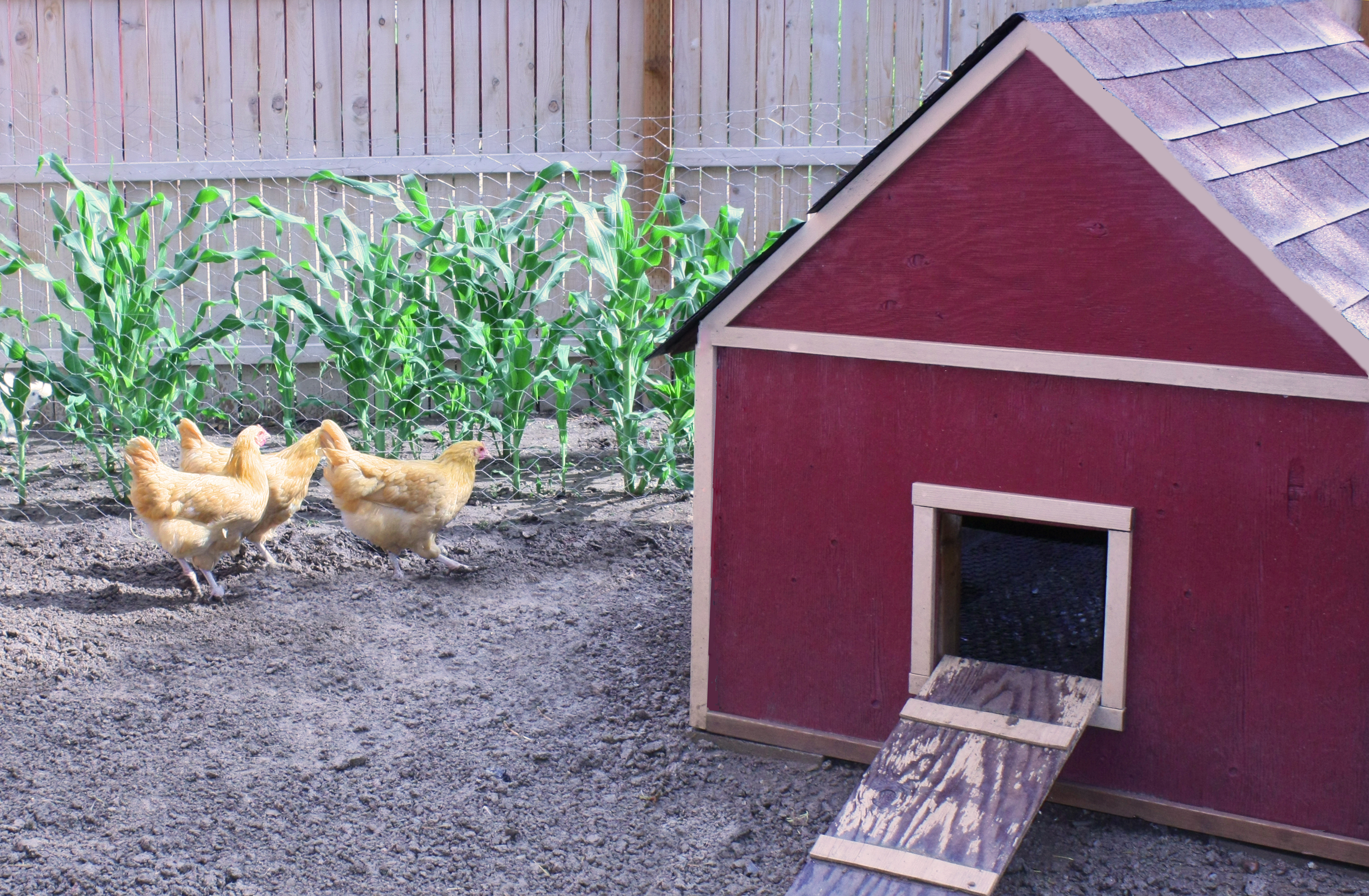 Ideas for outdoor decorating not just a housewife for Red chicken coop