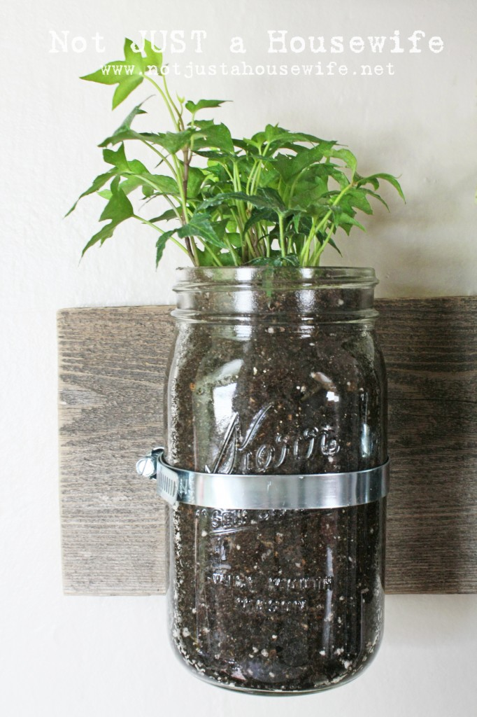 mason jar board 682x1024 Mason Jar Wall Planter