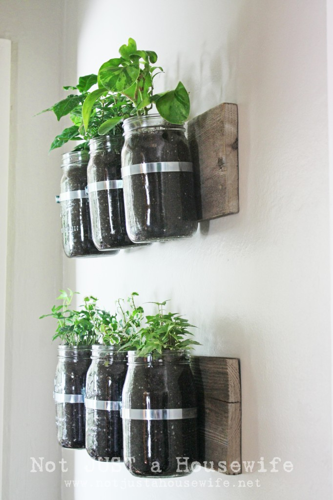 side view mason planter 682x1024 Mason Jar Wall Planter