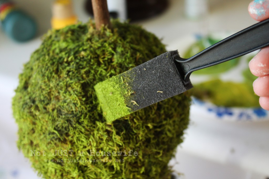 painting moss edited 1 1024x682 Freshen Up Your Moss!!!