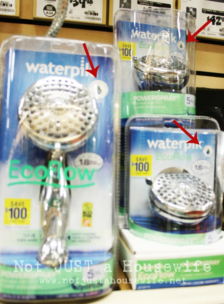 waterpic shower head 756x1024 What do Home Depot and Kermit the Frog have in Common???