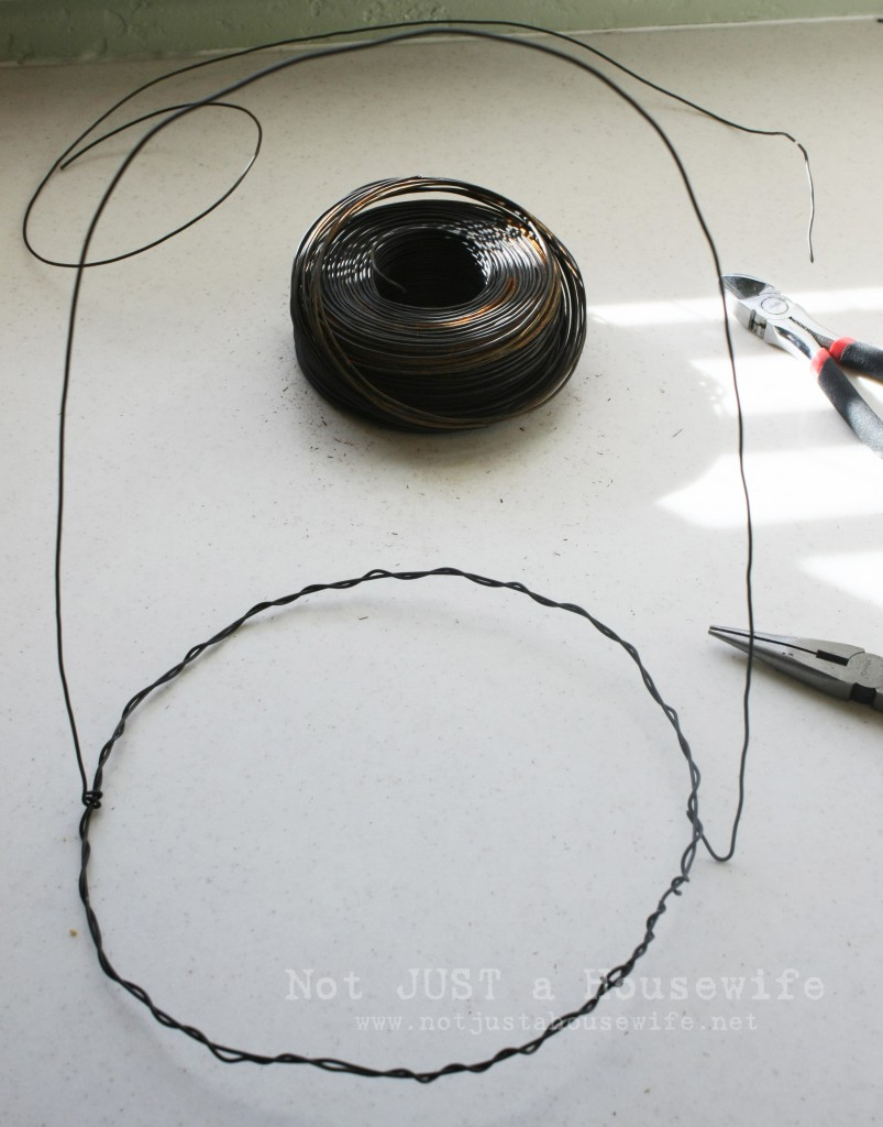 wrap wire 803x1024 Wire Plant Cloche Tutorial