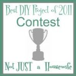 ANNOUNCING the Best DIY Project of 2011 CONTEST!!!
