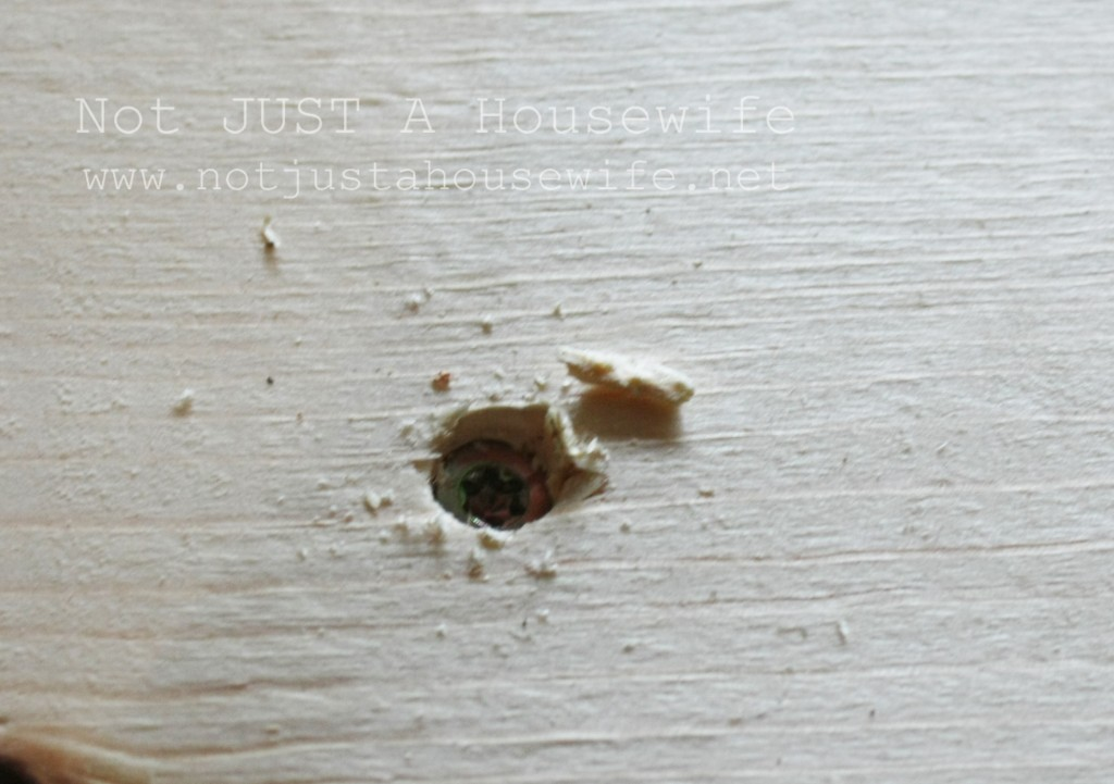 wood screw in wood