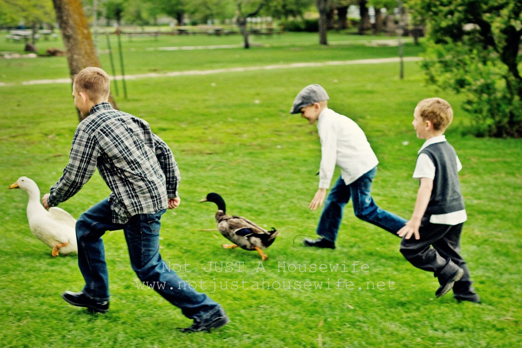 risenmay boys ducks 1024x682 UPrinting Canvas Giveaway!!!