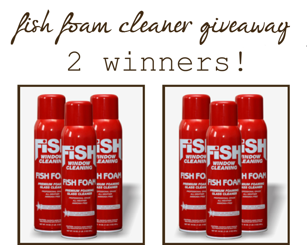 fish foam cleaner giveaway What in the world is Fish Foam??? {and a cute little video}