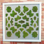 Moss Art (and why failures are sometimes a good thing)