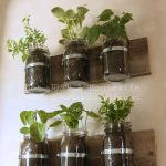 Mason Jar Planter: UPDATE