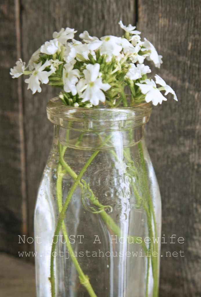 vintage milk bottle 693x1024 Decorate with Meaning