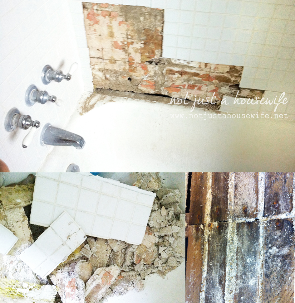 bathroom-demo-1