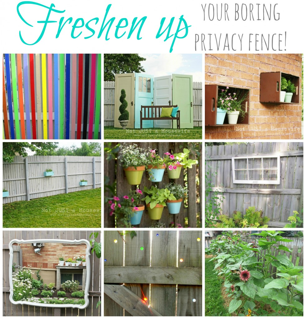 freshen up boring fence 983x1024 Articles I wrote :)