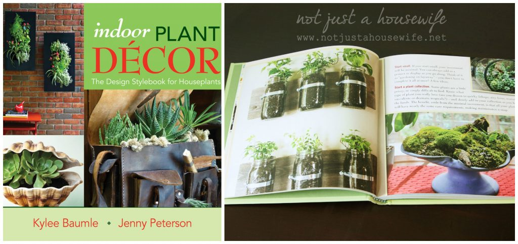 indoor plant decor 1024x482 I am in a book! {and a beautiful giveaway}