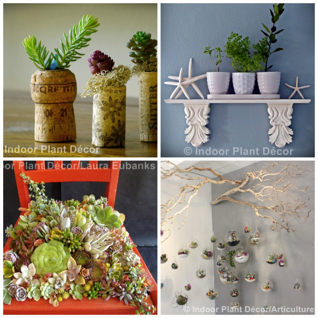 indoorplantdecor 1024x1024 I am in a book! {and a beautiful giveaway}