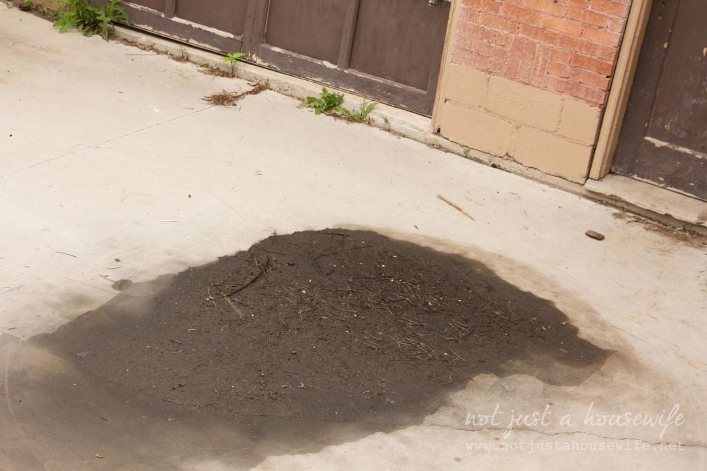 oil spill 1024x682 My Driveway got a MAKEOVER!