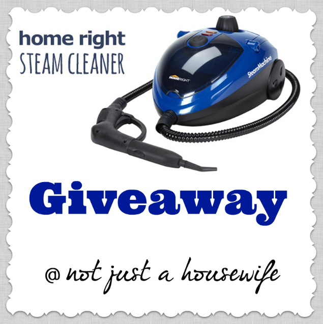 homeright steam cleaner HomeRight Steam Cleaner GIVEAWAY!!!