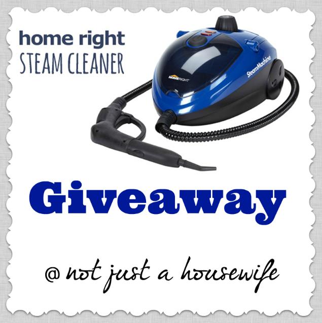 homeright-steam-cleaner