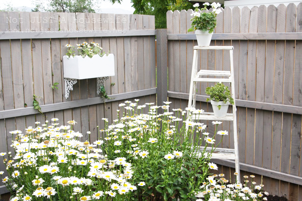 secret garden flower box 1024x682 Transform your Homes Backyard