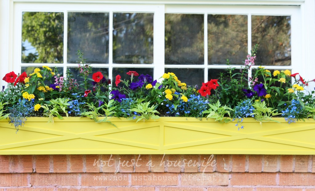 window box yellow 1024x622 How To Paint An Old Window