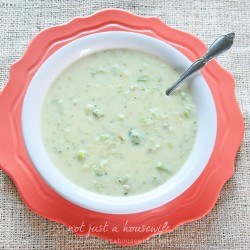 cream of broccoli soup
