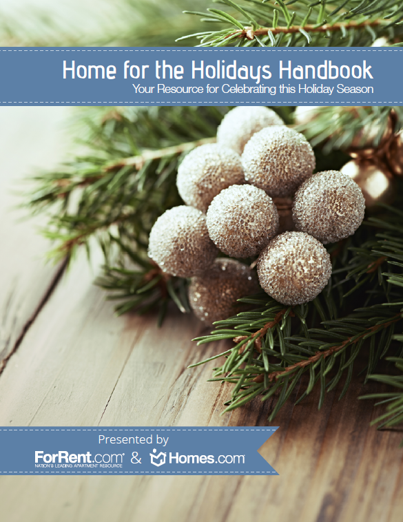 Home for the Holidays Handbook Show Me What Ya Got #148