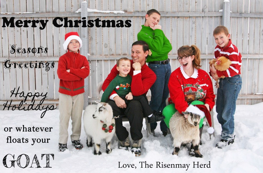 Christmas card 2013 edited 5 1024x676 Merry Awkward Christmas!