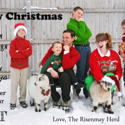 Christmas card 2013_edited-5