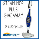 Things are getting steamy! {Steam Cleaner Giveaway}