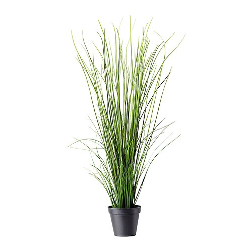 fejka artificial potted plant  0117267 PE272240 S4 More Or Less {American Dream Builders} Episode #7