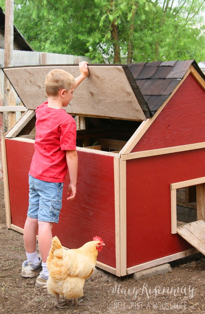 chicken coop5 671x1024 Raising Backyard Chickens