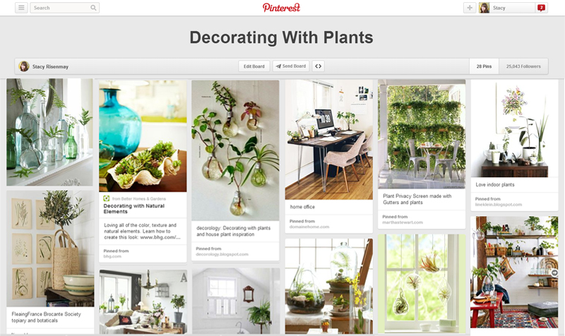 How To Decorate With Plants Stacy Risenmay: home decor pinterest boards to follow
