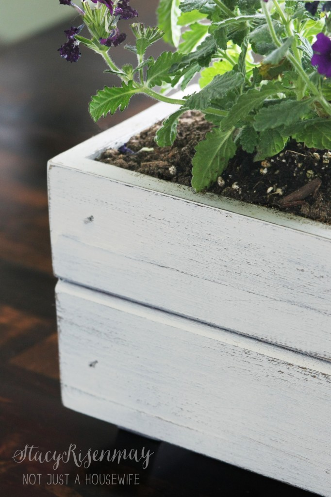 featured image planter box