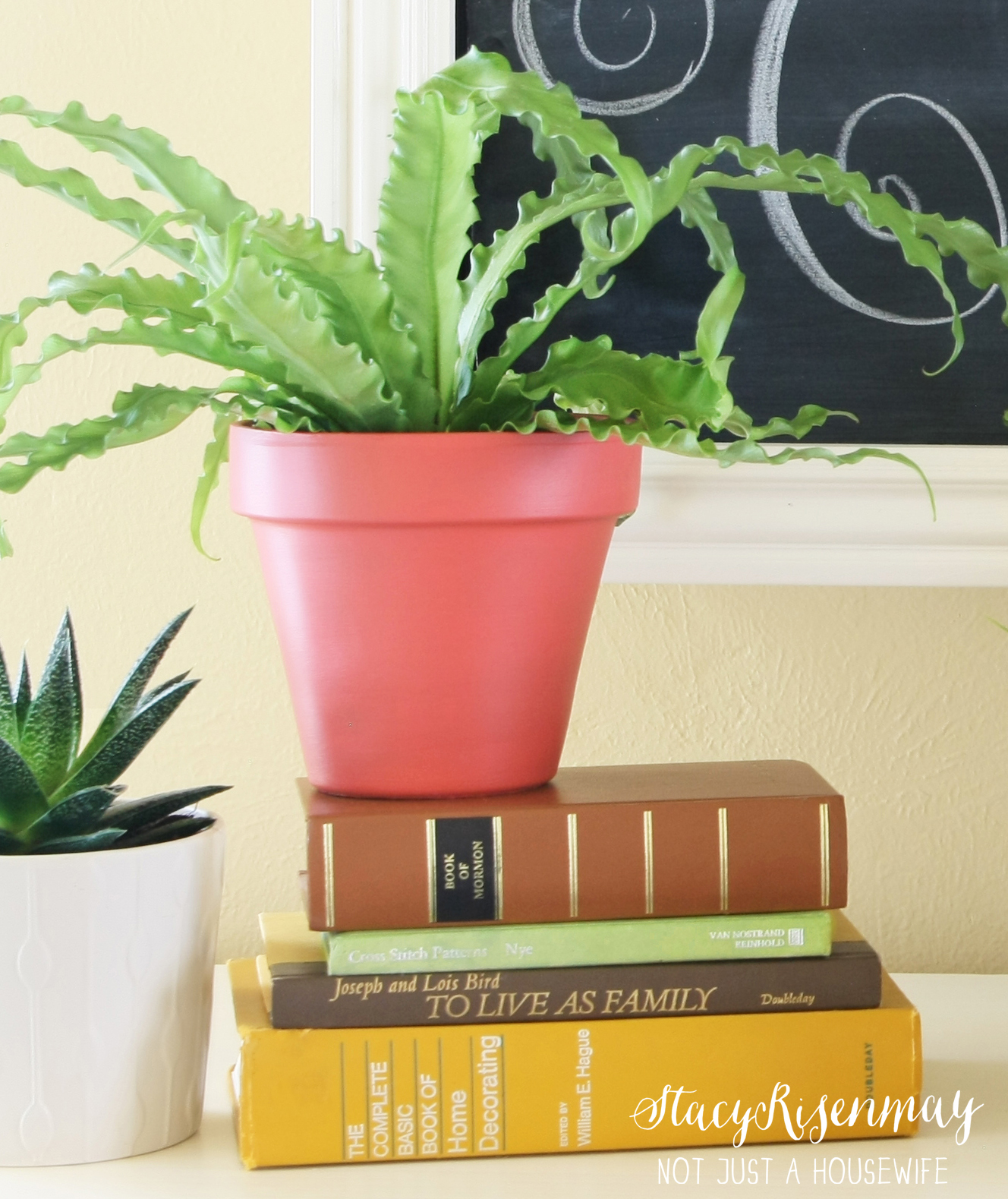 Ways To Decorate With Plants: How To Decorate With Plants