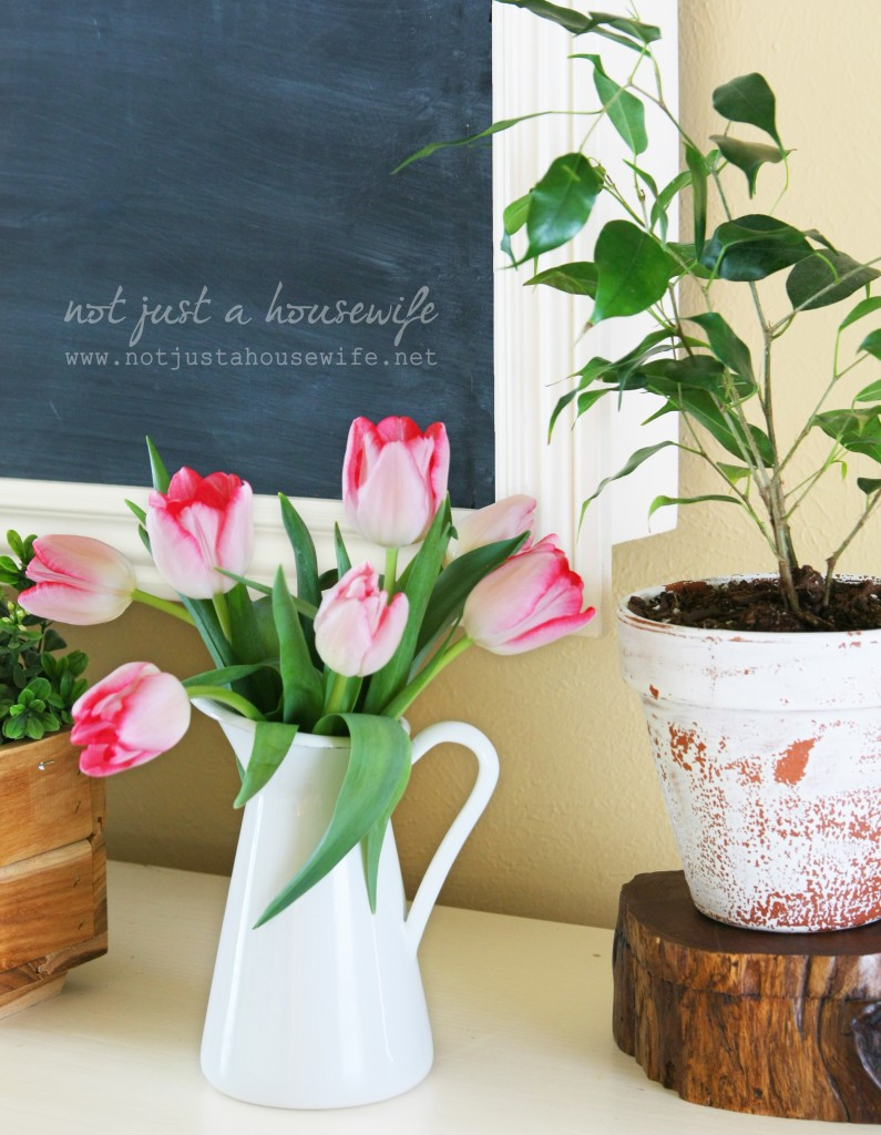 flower and plants decor