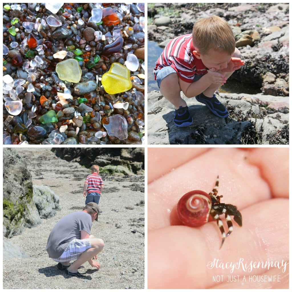 glass beach - fort bragg 1