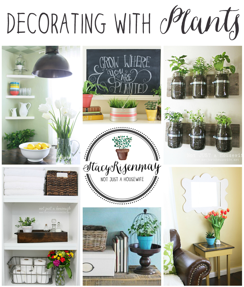 How To Decorate With Plants - Stacy Risenmay