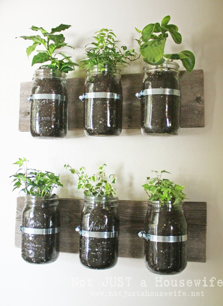 mason jar planter board 747x1024 How To Decorate With Plants
