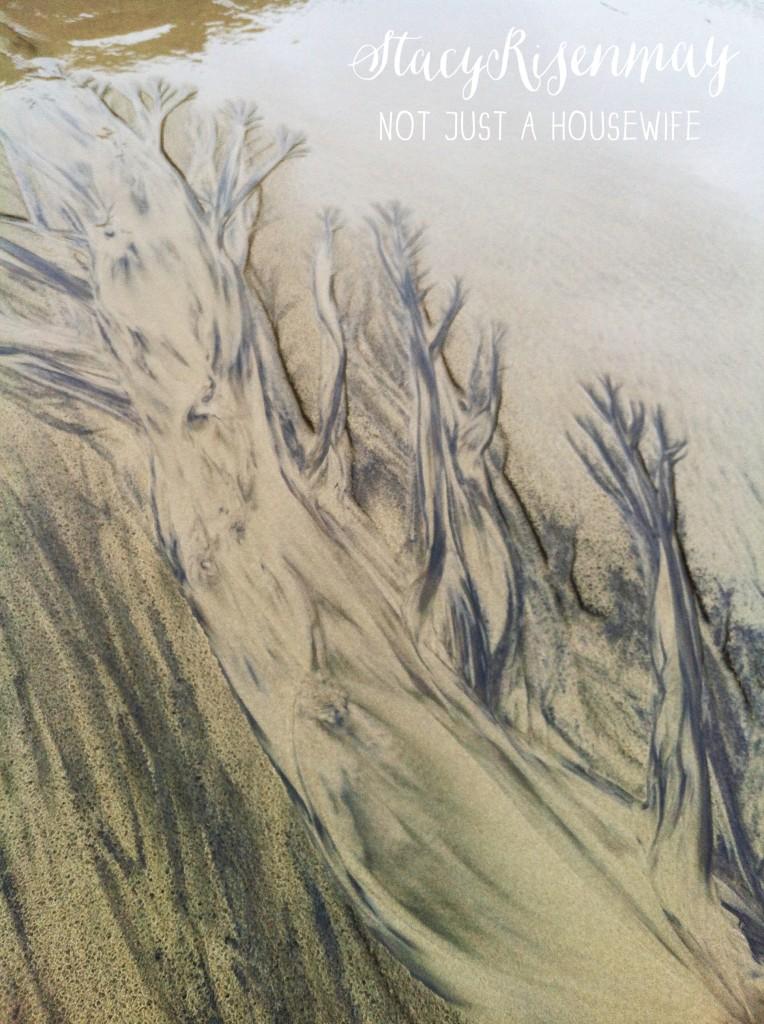 neptune beach_edited-1