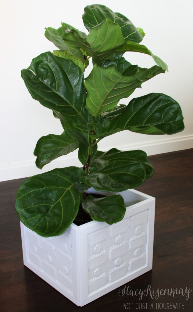 DIY modern geometric planter