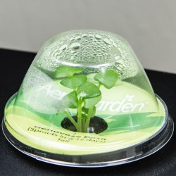 featured image aerogarden