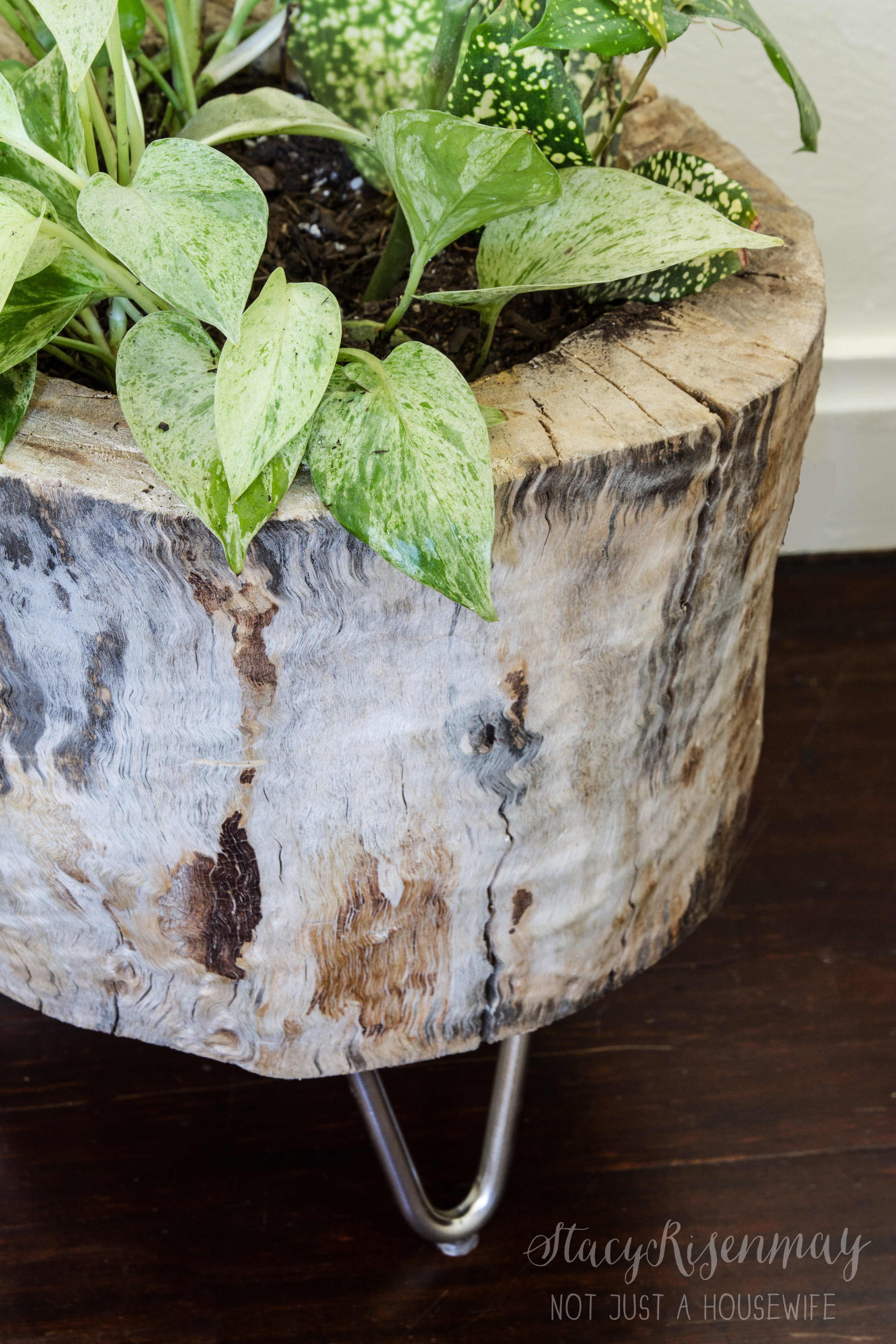 Modern Tree Stump Planter Not Just A Housewife
