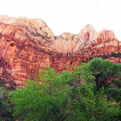 featured Zion_edited-1