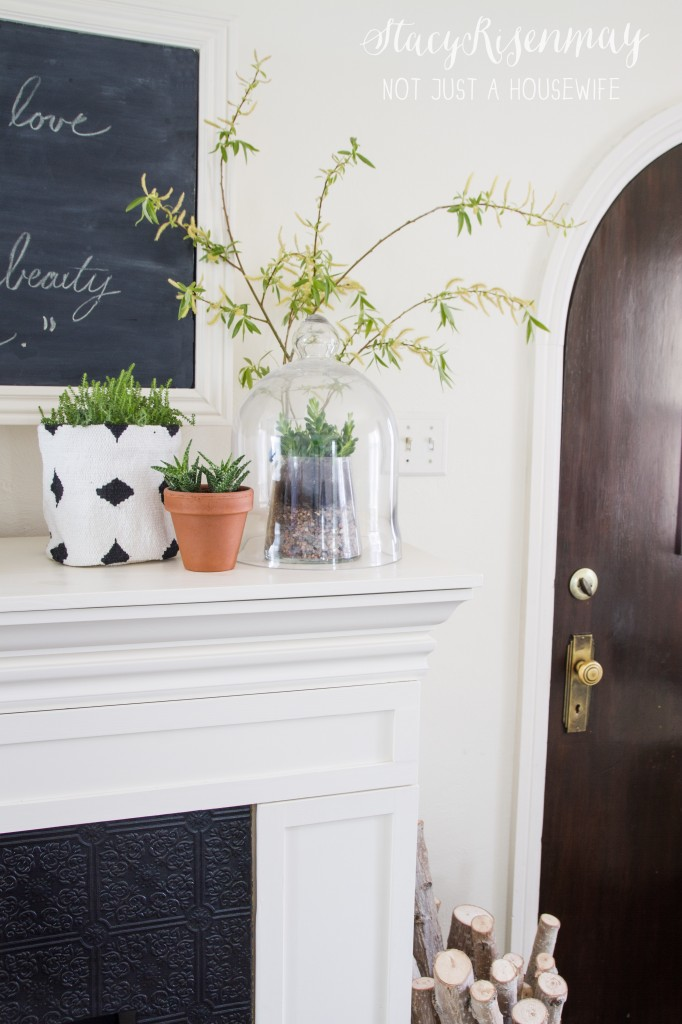 fireplace mantel with plants