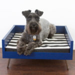 Midcentury Modern Dog Bed